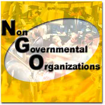 what-is-an-NGO