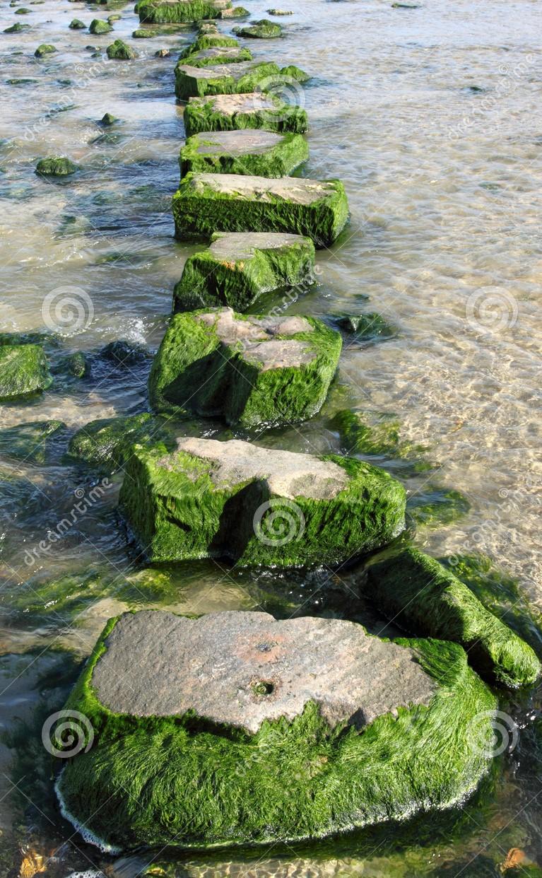 在大垫脚石流